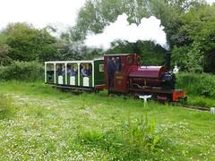 P1050707 (Hampton & Kempton Waterworks Railway.) Tags: loop devon galaday 2015 darent