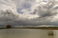 Deeneplaatweg (margie6920) Tags: biesbosch koningsdag noordwaard