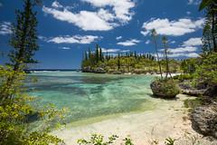 21112015-DSC_5656 (ciol46) Tags: island ile nouvellecaldonie newcaledonia caledonia mar loyalty nece caldonie loyaut nc