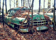 Fall from Grace (Dave* Seven One) Tags: rot abandoned junk rust decay rusty cadillac forgotten 1950s salvage 1950 fleetwood oldcarcityusa