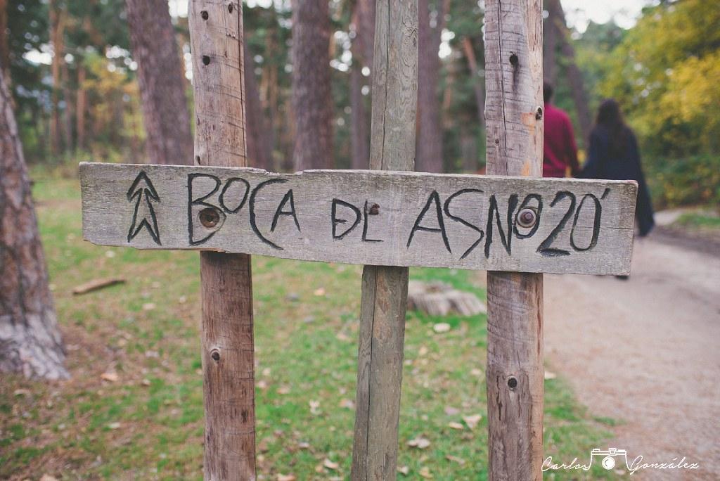 carlos-gonzalez-www-carlosgonzalezf-com-imagen-0008_web