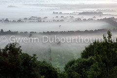 Marais Vernier-3 (Gwenn Dubourthoumieu) Tags: france nature normandie geo marais ecologie environement maraisvernier