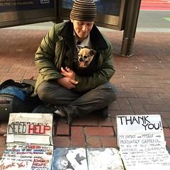 former teacher (vhines200) Tags: sanfrancisco dog sign homeless 88 panhandler 2016