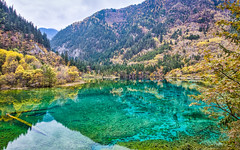 Jiuzhaigou - Multicoloured Lake (Sarmu) Tags: china wallpaper mountain lake tree nature landscape highresolution view outdoor widescreen unesco worldheritagesite 1600 highdefinition resolution 1200 aba hd wallpapers  sichuan  jiuzhaigou hdr 1920 ws 1080 1050 720p  1080p 2015 1680 720 digitalblending 2560   sarmu multicolouredlake
