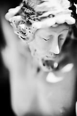 His Face (RMGphotos) Tags: statue mexico religious shrine catholic desert faith religion jesus statues mexican bajacalifornia catholicism shrines religions deserts crucifixion jesuschrist crucified vizcaino catholics sonofgod roadsideshrine