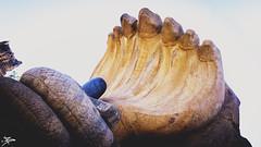 Stone Carving of Shivling @ Lepakshi Temple (briejeshpatel) Tags: india lumix shrine fort panasonic serpent shiva karnataka mandal linga andhrapradesh lepakshi shivling mirrorless gx1 anantpur veerabhadratemple microfourthirds ramayanamythology briejeshpatel lumixgx1 brijeshpatel compactcamerasystem