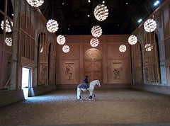 Project 366 - 014/366 - 01/14/2016 (Stphane Juban) Tags: horse royal palace lg versailles inside academy stable equestrian android nexus chateaudeversailles project365 project366 grandecurie