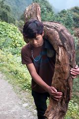 Strong? (Pooja Pant) Tags: nepal mountains beautiful trek abc annapurna annapurnabasecamp macchapuchre