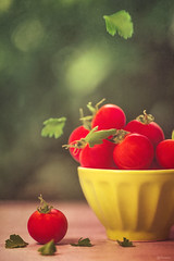 Tomatoes and parsley (Ro Cafe) Tags: red stilllife food green kitchen vegetables bokeh tomatoes parsley textured nikond600 nikkormicro105f28