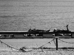 Balchik (Noe_Kiddo) Tags: mar sofia ciudad playa viajes bulgaria balchik varna