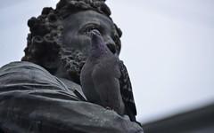 _DSC4767 (Rustam Bikbov) Tags: december saintpetersburg monuments pushkin 1884 2015
