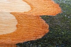Zacken (koDesign) Tags: wood brown tree nikon layer braun minimalism holz baum rinde stamm d300 nikkor50mmf14d schichten minimalismus