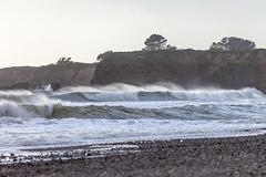 Año Nuevo State Park-7988 (马嘉因 / Jiayin Ma) Tags: california park beach water 1 sand state wave route año ano nuevo seaocean