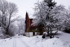 Red Barn (jwfuqua-photography) Tags: winter nature pennsylvania buckscounty peacevalleynaturecenter newbritain snowice jwfuquaphotography jerrywfuqua