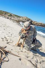 Doggie's First Day at the Beach (DLIFLC PAO) Tags: ca dog lingo mascot pacificgrove usarmy presidioofmonterey montereypeninsula dogonbeach dliflc militarydog defenselanguageinstituteforeignlanguagecenter ansilomarstatebeach
