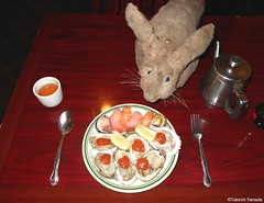 Dr. Takeshi Yamada and Seara (Coney Island sea rabbit) at the East Ocean Chinese Buffet in Brooklyn, NY on January 9, 2016. This is their favorite Chinese restaurant in New York.  20160109Sat DSCN3295=C1 (searabbits23) Tags: nyc ny newyork sexy celebrity art fashion animal brooklyn painting asian coneyisland japanese star tv google king artist dragon god manhattan wildlife famous gothic goth chinese performance pop taxidermy cnn tuxedo bikini portraiture tophat unitednations playboy entertainer takeshi samurai genius donaldtrump mermaid amc johnnydepp mardigras salvadordali unicorn billclinton hillaryclinton billgates aol vangogh curiosities sideshow jeffkoons globalwarming takashimurakami pablopicasso steampunk yamada damienhirst cryptozoology freakshow barackobama seara immortalized takeshiyamada museumofworldwonders roguetaxidermy searabbit ladygaga climategate