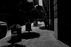 It's so apparent. But I can't see it. (all the bulbs are spent...) Tags: sanfrancisco california street test streetphotography financialdistrict sidewalk bayarea montgomerystreet leicam6 kodaktrix400 voigtlndernoktonclassic35mmf14