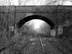 Disused Railway Bridge, Lichfield to Walsall Railway (Jason_Hood) Tags: disused abandoned railway railroad southstaffordshireline southstaffordshirerailway monochrome blackandwhite