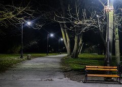 Night walk (@Dpalichorov) Tags: night garden bench way lights alley nikon path walk bulgaria nightwalk varna nikond3200 d3200 nightpath nightalley