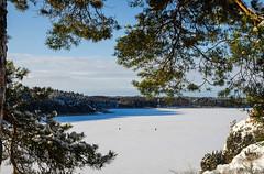 Gone fishin' (Joni Mansikka) Tags: trees winter sea snow ice nature pine woodland suomi finland landscape fishing outdoor sunny bluesky balticsea archipelago naantali tamronspaf1750mmf28xrdiiildasphericalif icecover