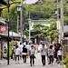 Hase-dera Kamakura 長谷寺(鎌倉)