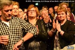 2016 Bosuil-Het publiek bij The Paladins en Cats on the Corner 24