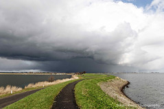Sunshine, clouds and hail (Johan Konz) Tags: winter sea sky cloud seascape reed water netherlands sunshine weather hail clouds landscape shower grey outdoor dike waterland darkblue wintry ijmeer seadike uitdammerdijk kinselmeer