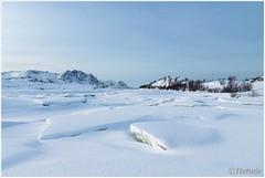 kruiend ijs (HP003350) (Hetwie) Tags: winter snow ice nature norway landscape see sneeuw natuur zee auroraborealis landschap ijs noorwegen nordland noorderlicht northernlight kruiendijs