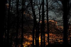z onder 4 (EWOUD DE BEELDVANGER) Tags: zonsondergang hooglanders schade vijfhoekpark