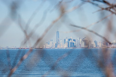 Manhattan Skyline (Erin Cadigan Photography) Tags: city nyc newyorkcity urban newyork building tree tourism water horizontal skyline architecture river island harbor daylight branch cityscape view manhattan worldtradecenter borough daytime wtc hudson statenisland freedomtower fortwadsworth