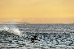 Yesterday's Waves (Donnie Nicholson) Tags: sunrise surfer surfergirl eastcoastsurf beach90 beach86 yesterdayswaves