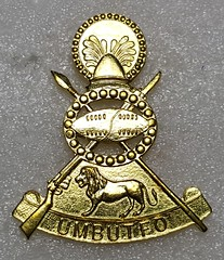 Army (Sin_15) Tags: army military badge insignia beret swaziland