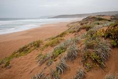050316 (babushka) Tags: ocean sea mist beach water clouds sand waves southaustralia waitpinga mandiwhitten canoneos5dmkii wwwmandiwhittencom