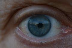 Me, Myself, Eye - TROML - 1403 (Clint__Budd) Tags: eye inherited macromondays 116picturesin2016