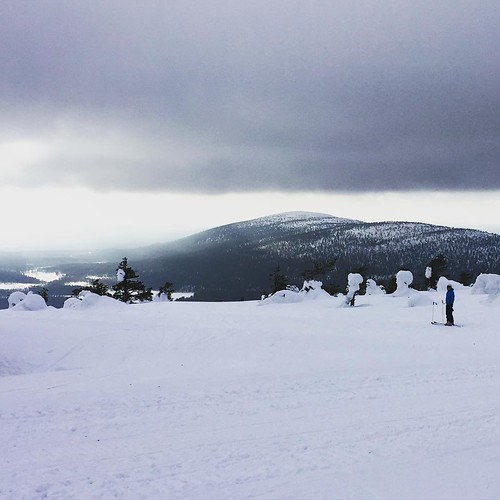#tunturissa #levi #lapland #holiday #telemark #windy #ski