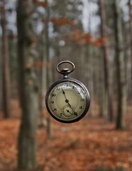 clock in air (dovlindphoto) Tags: trees clock nature forest cool woods moody time sweden awesome watch freeze stopped pocketwatch åmål dovlind dovlindphoto