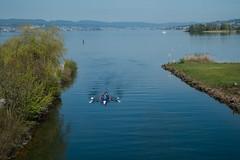 Rudern (Vierer) (swissgoldeneagle) Tags: schweiz switzerland rowing sweep ch schwyz rudern zrichsee lakezurich rowingboat ruderboot vierer zuerichsee seedamm rx100 freienbach sweepoarrowing rx100m4