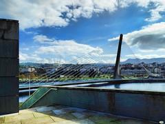 Veranillo en noviembre (juantiagues) Tags: puente pontevedra tirantes juanmejuto juantiagues