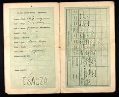 33162_620303988_0180-00200 (mkvirg) Tags: 1920s hungary passport 1910s immigration ellisisland magyarorszg emigration hungarians magyartlevl