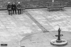 Bilbo, Bizkaia, Euskal Herria (Basque Country). 2016.04.14 (Tx.rekords.EH.) Tags: blackandwhite blancoynegro ngc bizkaia euskalherria bilbo basquecountry baskenland ander zuriaetabeltza txrekordseh andertxrekordseh