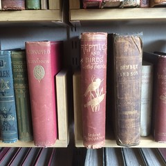 Shelves of a bookshop in Whitstable, Kent (tedesco57) Tags: birds by tom century austin de louis kent essays antique uncle son charles books cable selected stevenson and robson hb reptiles figuier stow kidnapped eighteenth dombey
