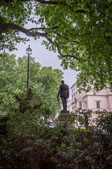Open Garden Squares 2015 - 1848.jpg (DavidRBadger) Tags: city london greenspace planetree 2015 cityofwestminster londonplanetree urbansquare opengardensquares carltonhouseterracegarden