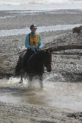 IMG_EOS 7D Mark II201604030527 (David F-I) Tags: horse equestrian horseback horseriding trailriding trailride ctr tehapua watrc wellingtonareatrailridingclub competitivetrailriding sporthorse equestriansport competitivetrailride april2016 tehapua2016 tehapuaapril2016 watrctehapuaapril2016