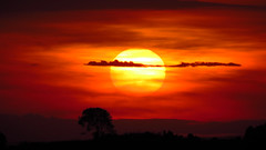 IMG_11244 (RPDipp) Tags: sunset sol canon sue sx50