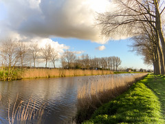 Where gold speaks, every tongue is silent ... (babs van beieren) Tags: trees sunlight water landscape evening outdoor brugge vaart damme