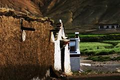 IMG_2610 (@Hao) Tags: tibet ngari