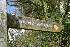 DSC_0206 (Geogrob) Tags: fieldwork edale grindsbrook goldenclough riverstudy rivernoe