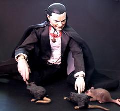 Dracula and his pets. (Hannhell) Tags: pet pets rat dracula rats horror belalugosi