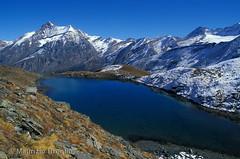 Lago Nero 01 (maurizio.broglio) Tags: parco lago gran nero paradiso nazionale valsavarenche grivola