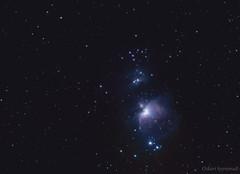 M42 - Orion Nebula - Feb. 5-6, 2016 (Oskari Syynimaa) Tags: stars nebula orion m42 m43